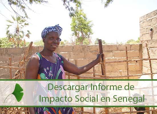 impacto_social_senegal.jpg