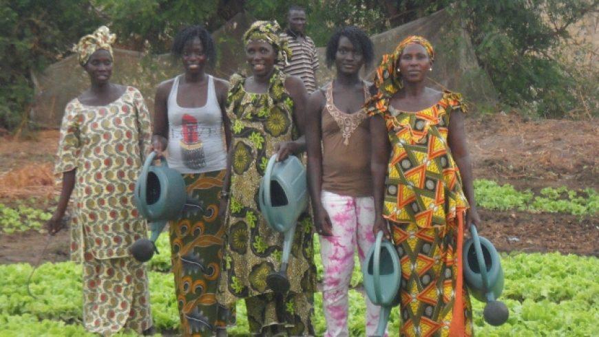 Ndanne Doole, Senegal