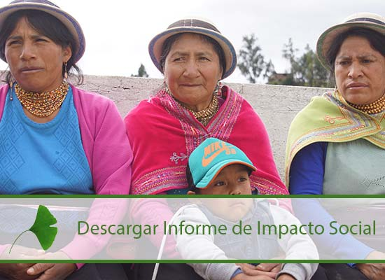informe_impacto_sociall.jpg