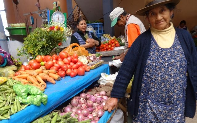 Lucía Quispe, Perú
